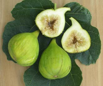 Fig - White Marseilles