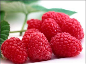 Raspberry - Tadmor